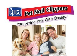 dog-nail-trimming-without-tears