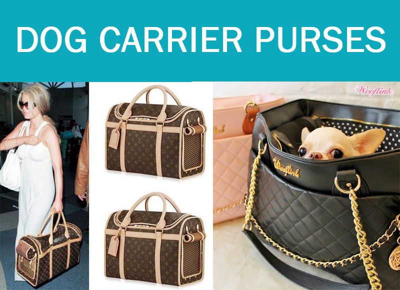 How To Choose The Best Dog Carrier Purses